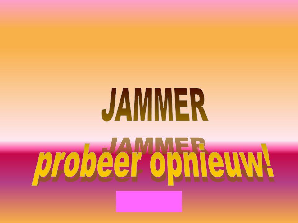 JAMMER probeer opnieuw!