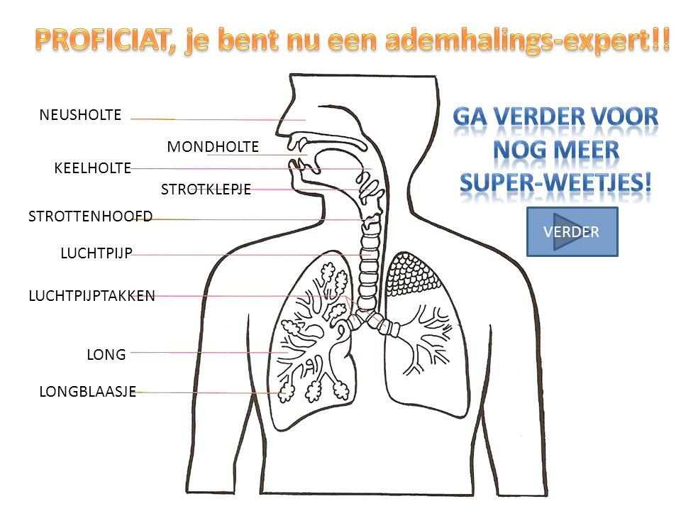 PROFICIAT, je bent nu een ademhalings-expert!!