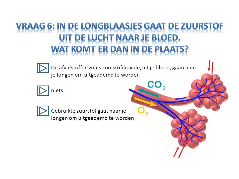 Vraag 6: In de longblaasjes gaat de zuurstof uit de lucht naar je bloed. Wat komt er dan in de plaats