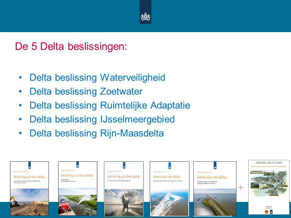 De 5 Delta beslissingen: