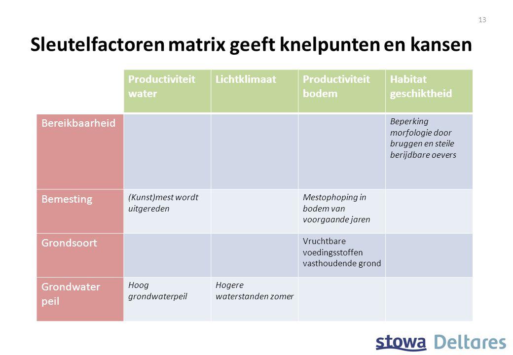 Sleutelfactoren matrix geeft knelpunten en kansen