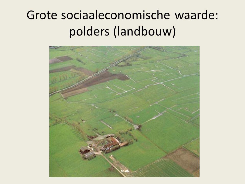 Grote sociaaleconomische waarde: polders (landbouw)