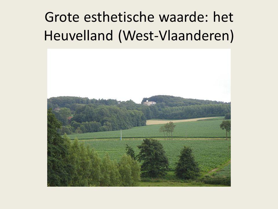 Grote esthetische waarde: het Heuvelland (West-Vlaanderen)
