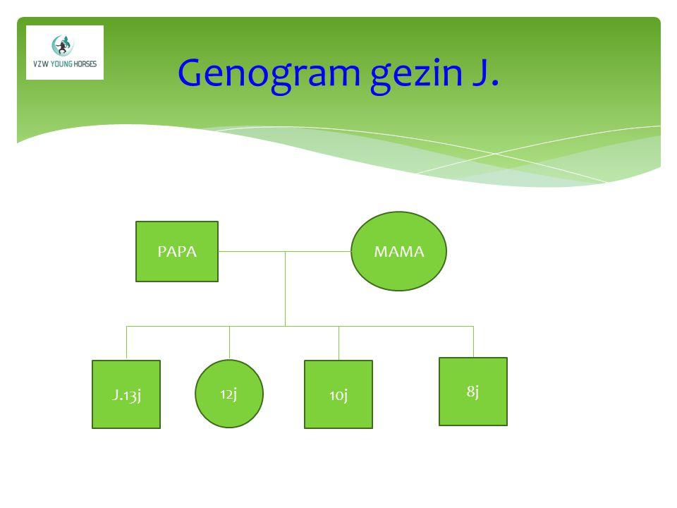 Genogram gezin J. MAMA PAPA J.13j 12j 10j 8j