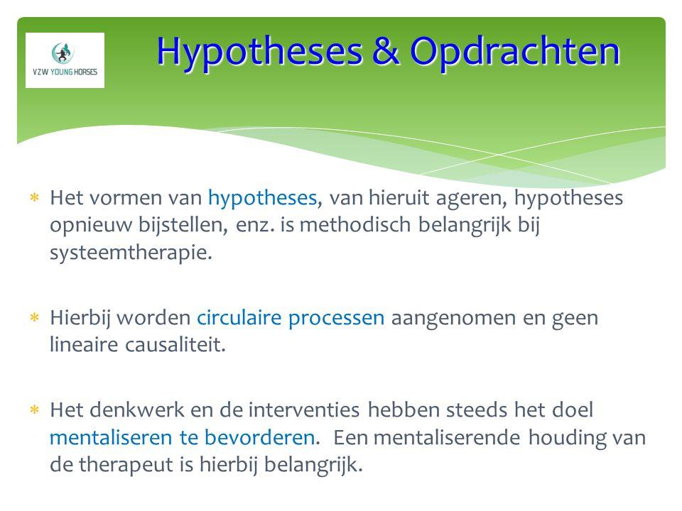 Hypotheses & Opdrachten