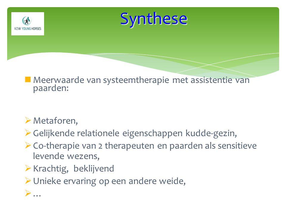 Synthese Meerwaarde van systeemtherapie met assistentie van paarden: