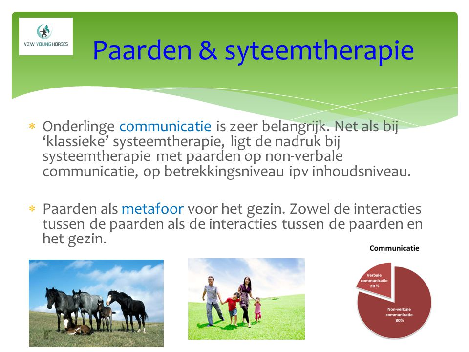 Paarden & syteemtherapie
