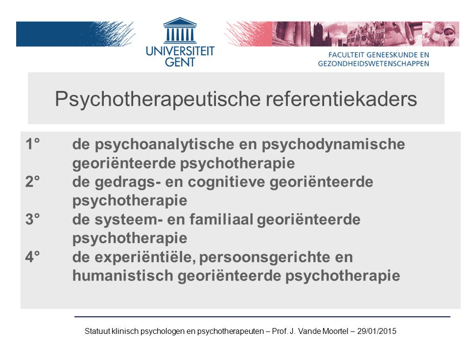 Psychotherapeutische referentiekaders