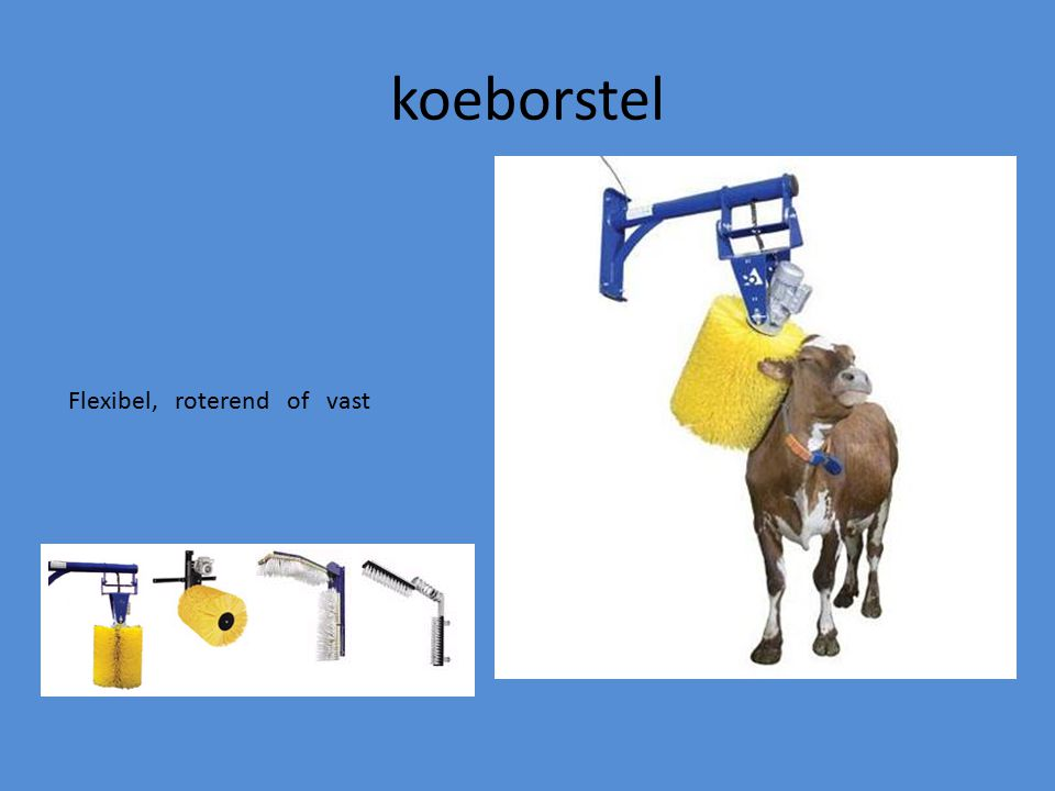 koeborstel Flexibel, roterend of vast