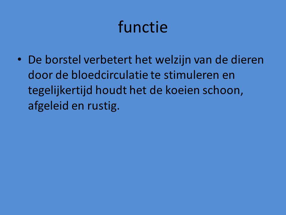 functie