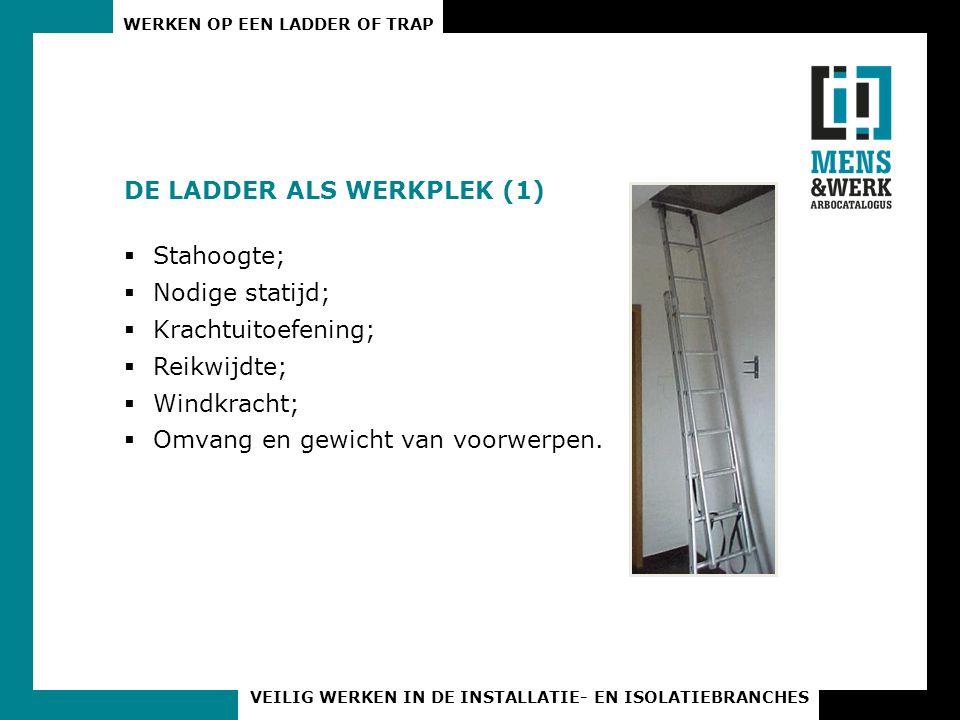 DE LADDER ALS WERKPLEK (1)