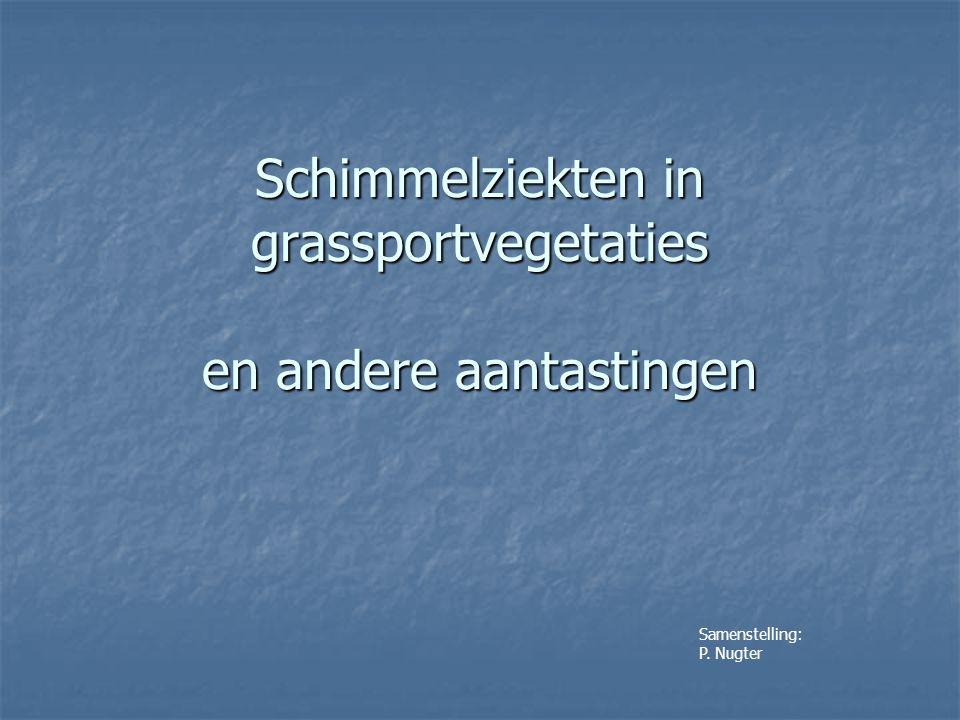 Schimmelziekten in grassportvegetaties en andere aantastingen