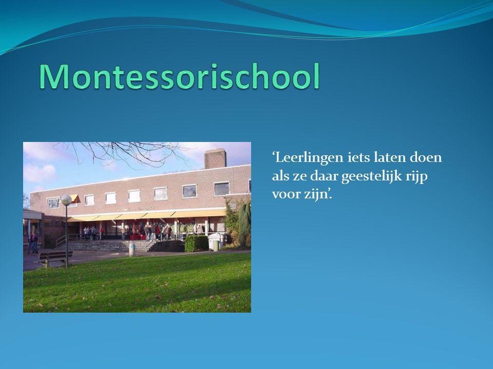 Montessorischool 'Leerlingen iets laten doen als ze daar geestelijk rijp voor zijn'.