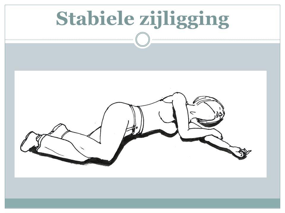 Stabiele zijligging