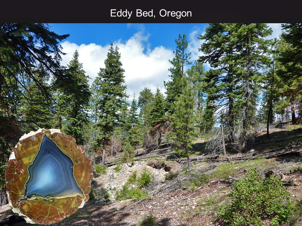 Eddy Bed, Oregon
