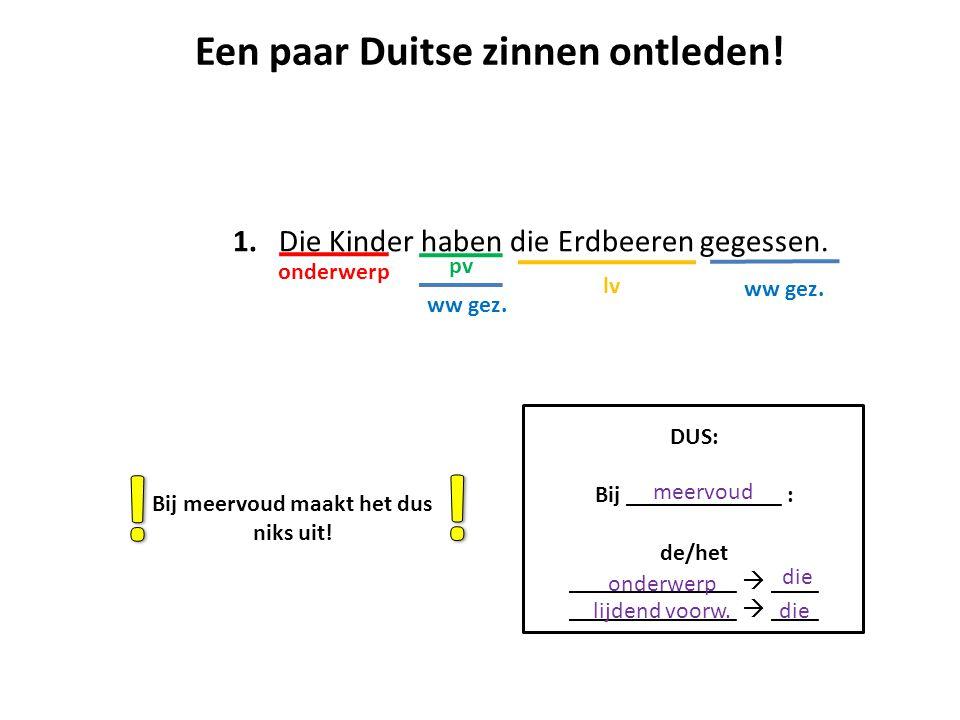 Een paar Duitse zinnen ontleden! Bij meervoud maakt het dus niks uit!