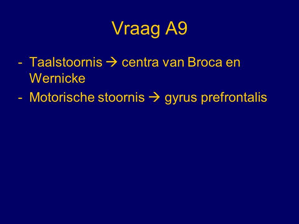 Vraag A9 Taalstoornis  centra van Broca en Wernicke