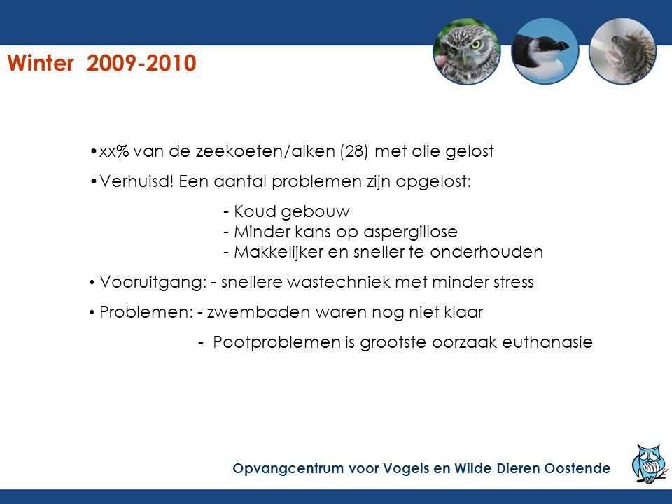 Winter 2009-2010 xx% van de zeekoeten/alken (28) met olie gelost
