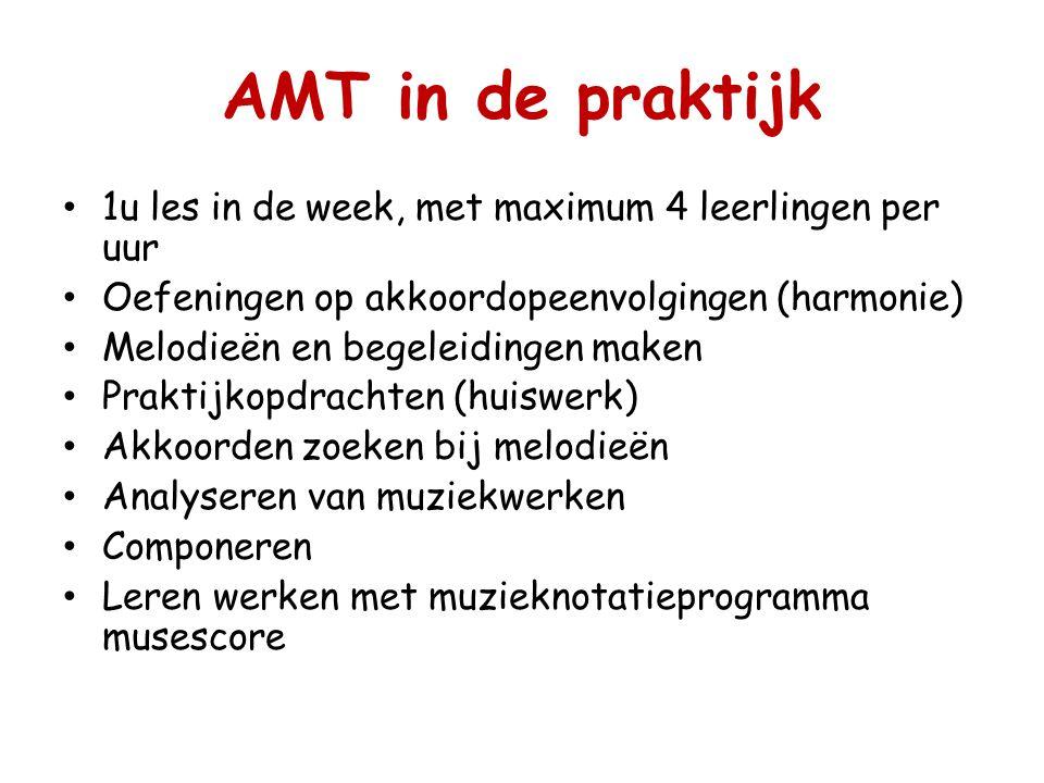 AMT in de praktijk 1u les in de week, met maximum 4 leerlingen per uur