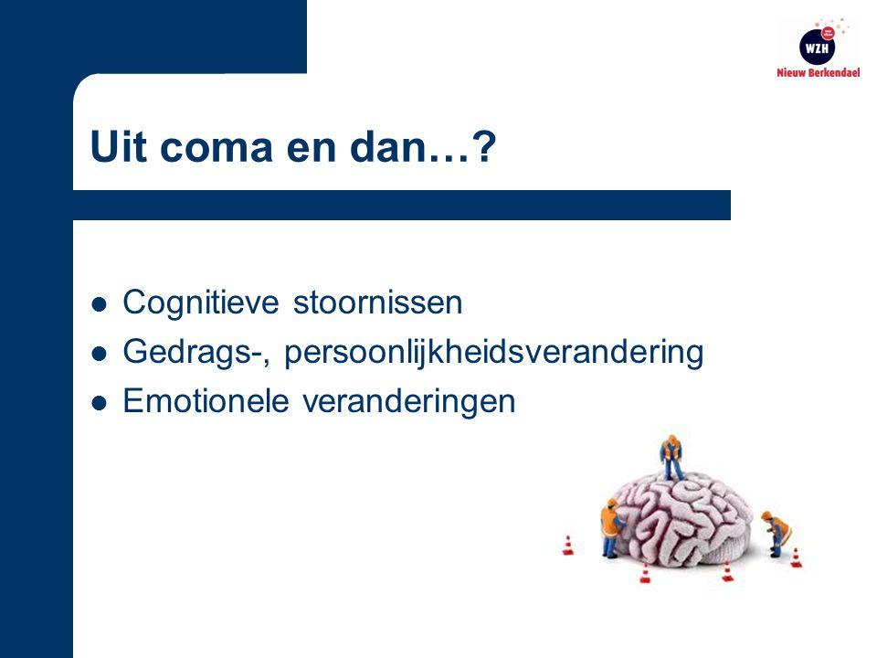 Uit coma en dan… Cognitieve stoornissen