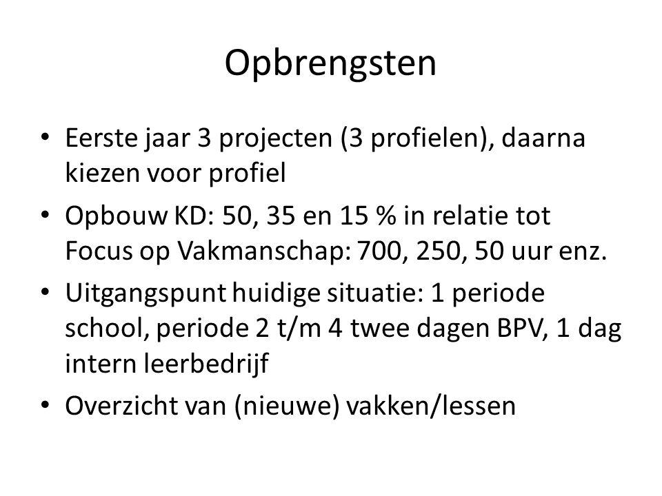 Opbrengsten Eerste jaar 3 projecten (3 profielen), daarna kiezen voor profiel.
