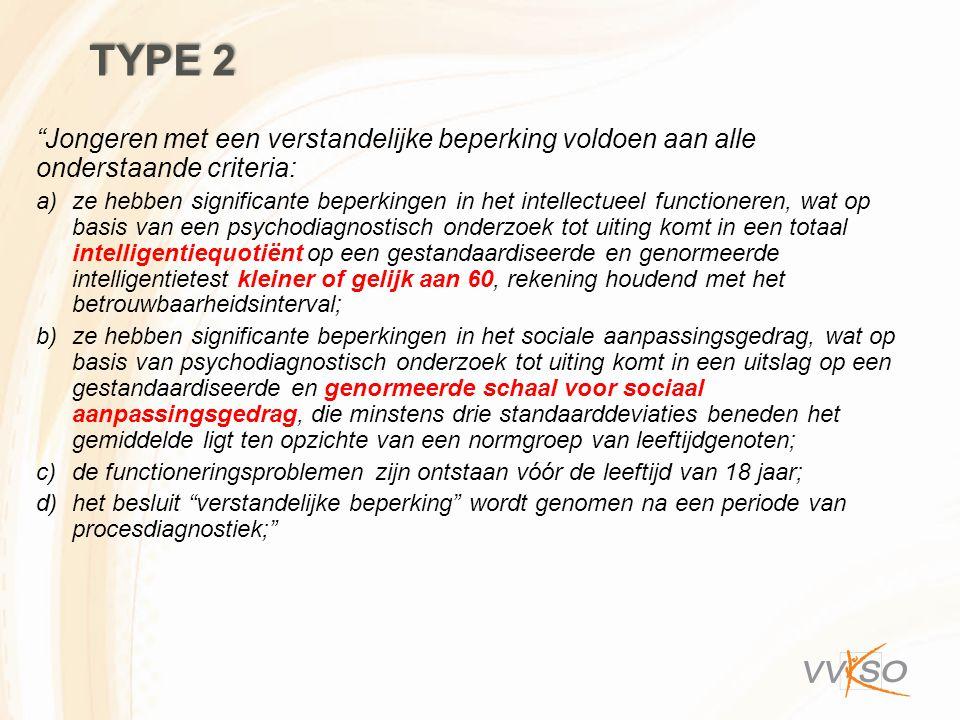 Type 2 Jongeren met een verstandelijke beperking voldoen aan alle onderstaande criteria: