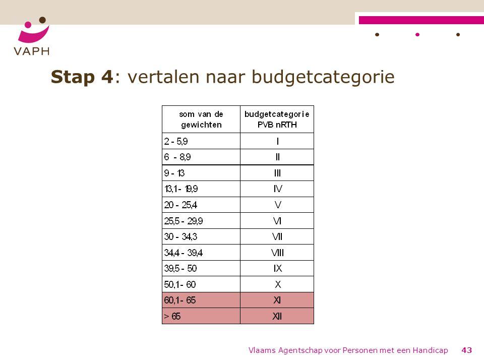 Stap 4: vertalen naar budgetcategorie