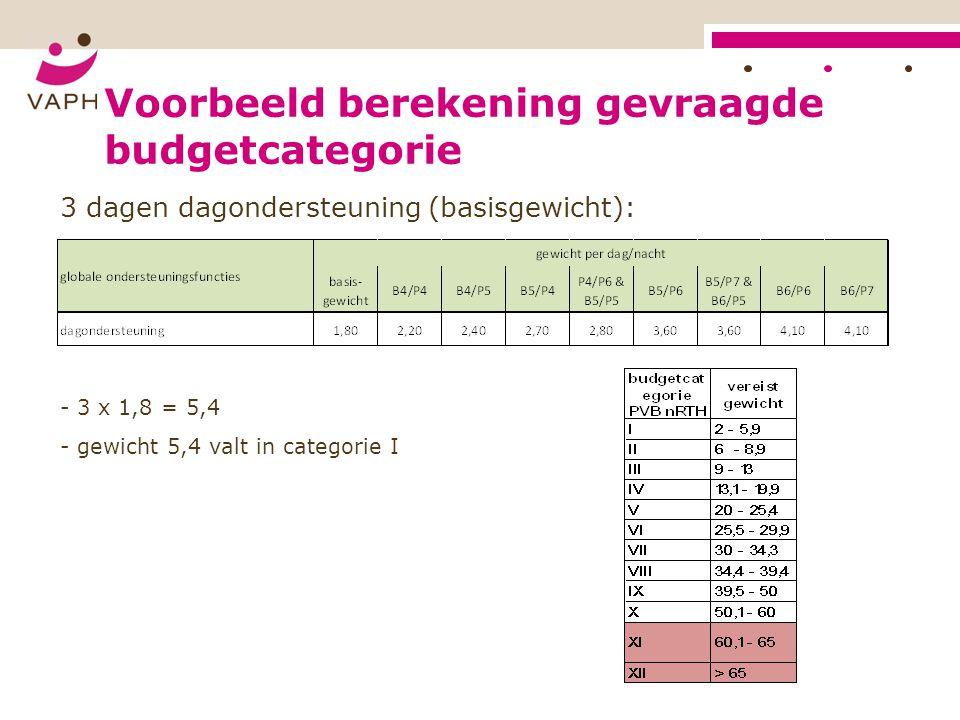 Voorbeeld berekening gevraagde budgetcategorie