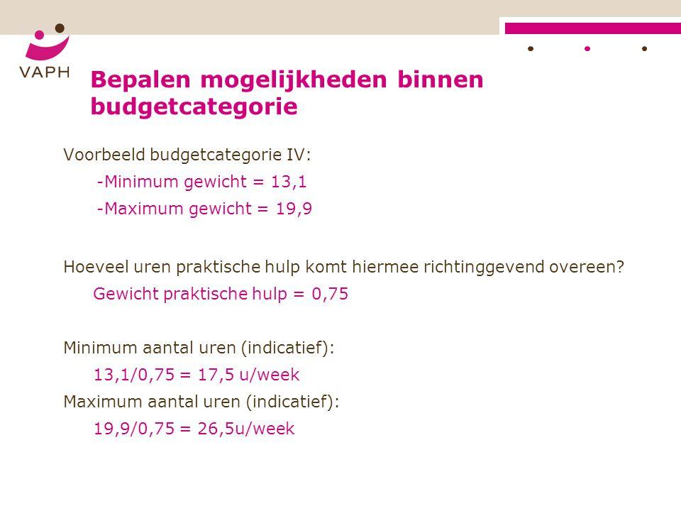 Bepalen mogelijkheden binnen budgetcategorie