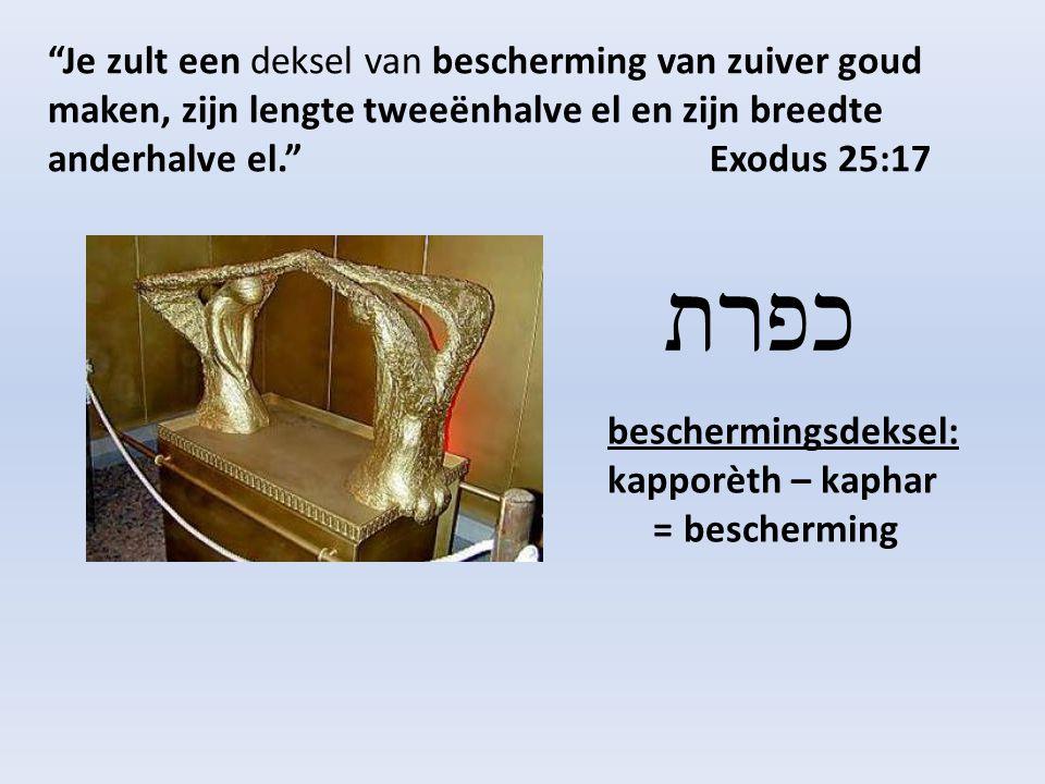 Je zult een deksel van bescherming van zuiver goud maken, zijn lengte tweeënhalve el en zijn breedte anderhalve el. Exodus 25:17