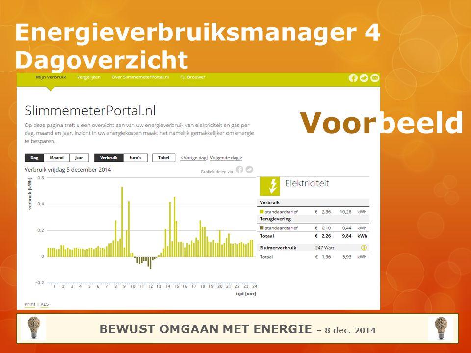 Energieverbruiksmanager 4 Dagoverzicht