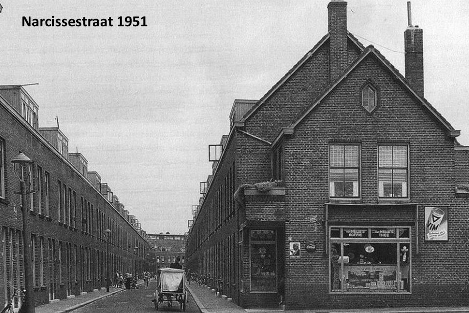 Narcissestraat 1951