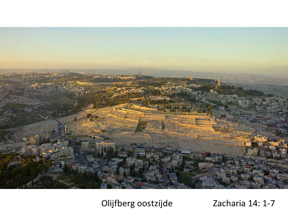 Olijfberg oostzijde Zacharia 14: 1-7