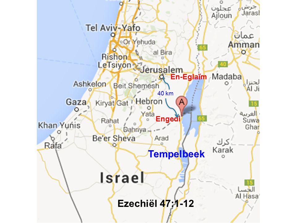 En-Eglaïm 40 km Engedi Tempelbeek Ezechiël 47:1-12
