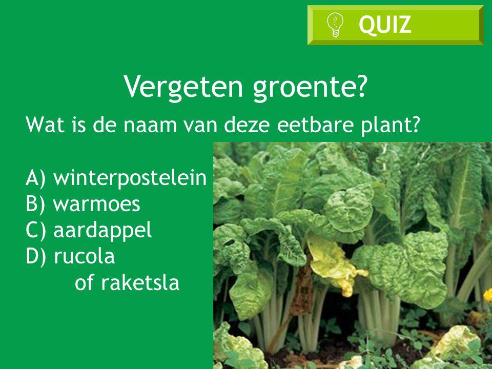 Vergeten groente. Wat is de naam van deze eetbare plant.
