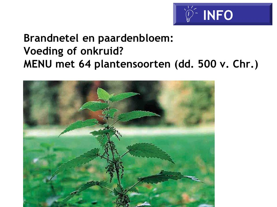 IFO Brandnetel en paardenbloem: Voeding of onkruid
