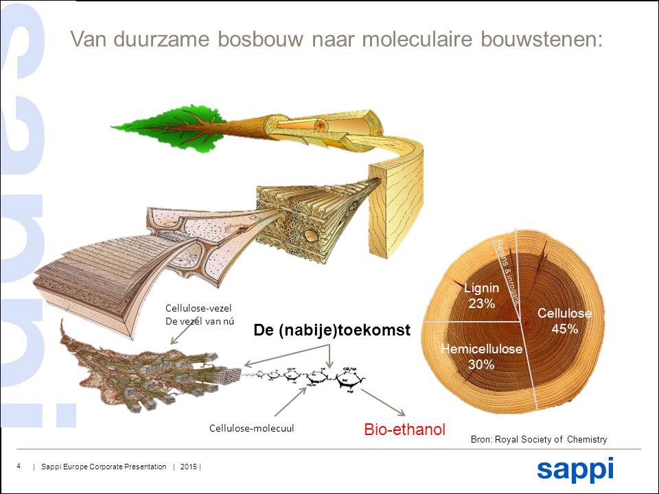Van duurzame bosbouw naar moleculaire bouwstenen: