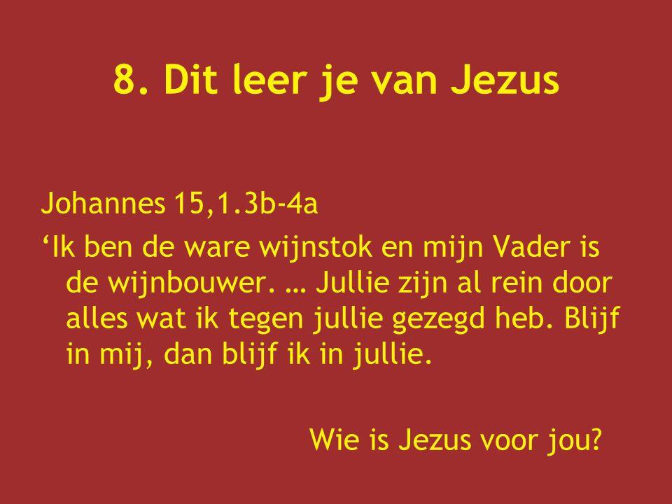 8. Dit leer je van Jezus Johannes 15,1.3b-4a