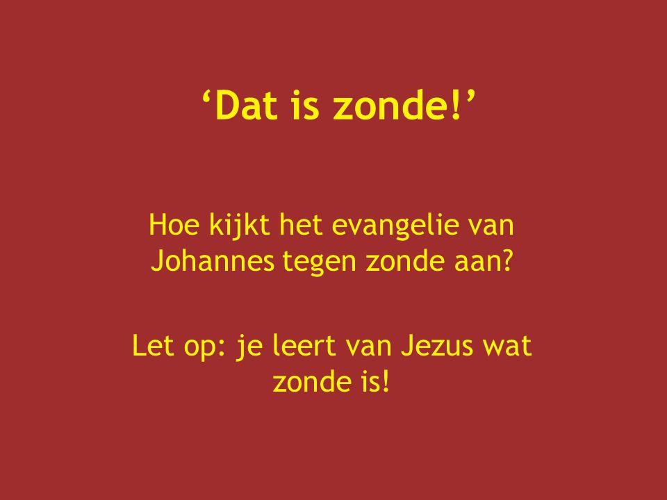 'Dat is zonde!' Hoe kijkt het evangelie van Johannes tegen zonde aan