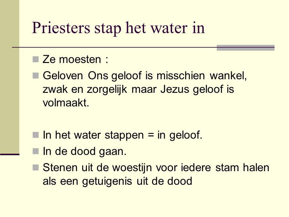 Priesters stap het water in