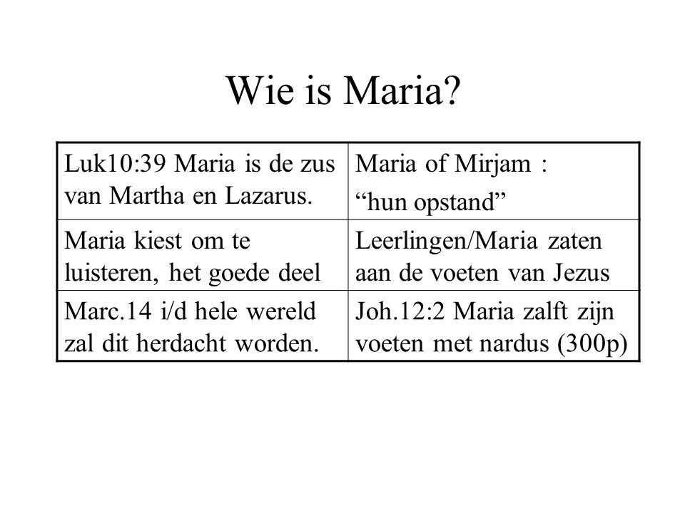 Wie is Maria Luk10:39 Maria is de zus van Martha en Lazarus.