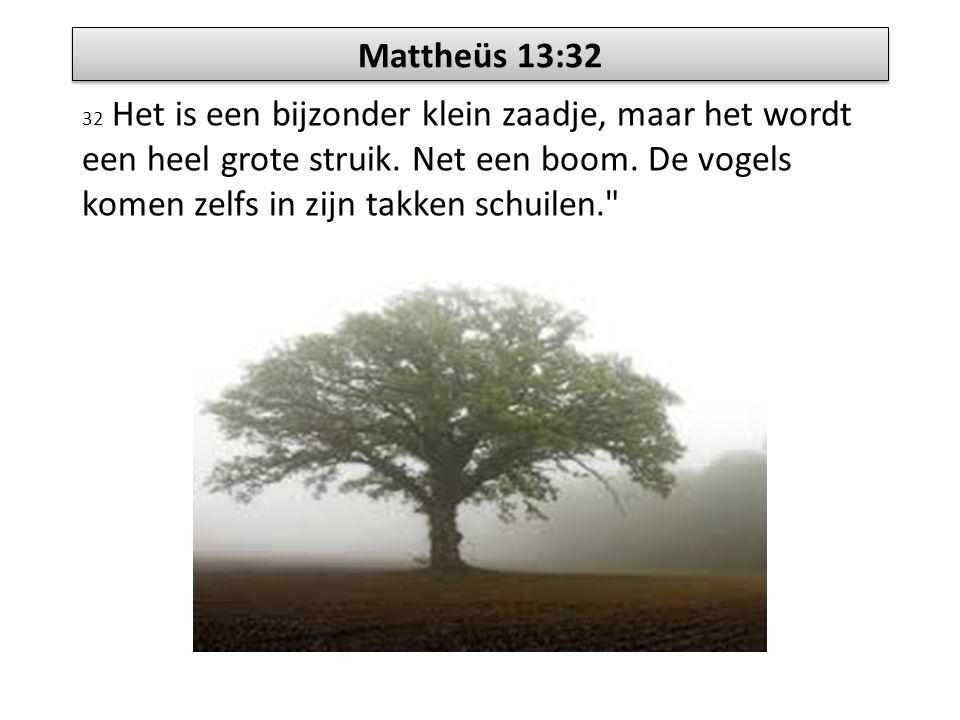 Mattheüs 13:32