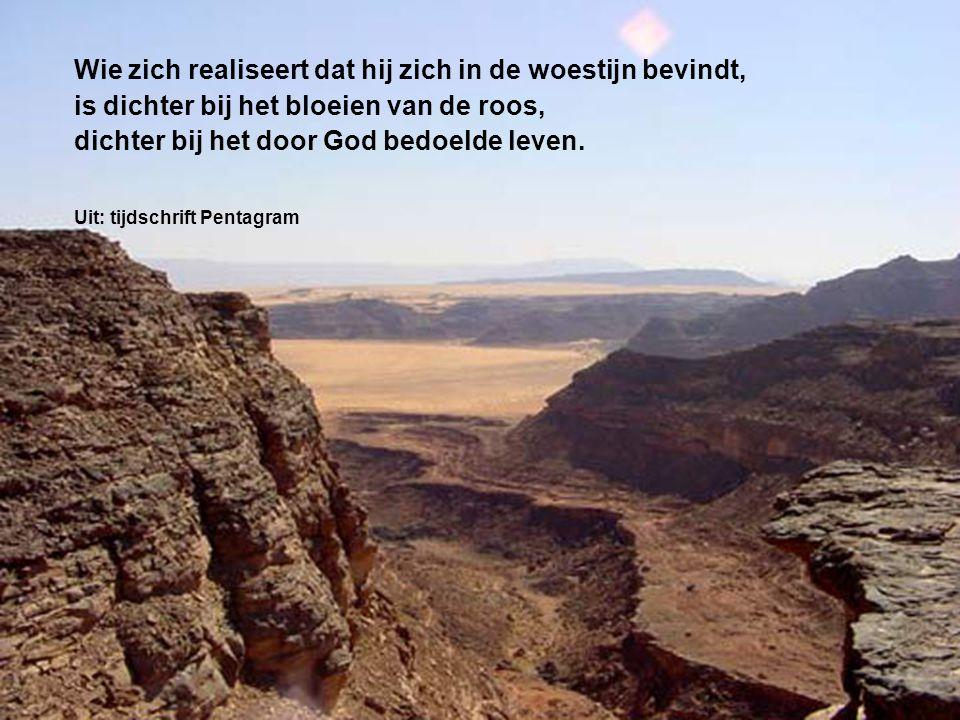 Wie zich realiseert dat hij zich in de woestijn bevindt, is dichter bij het bloeien van de roos, dichter bij het door God bedoelde leven.