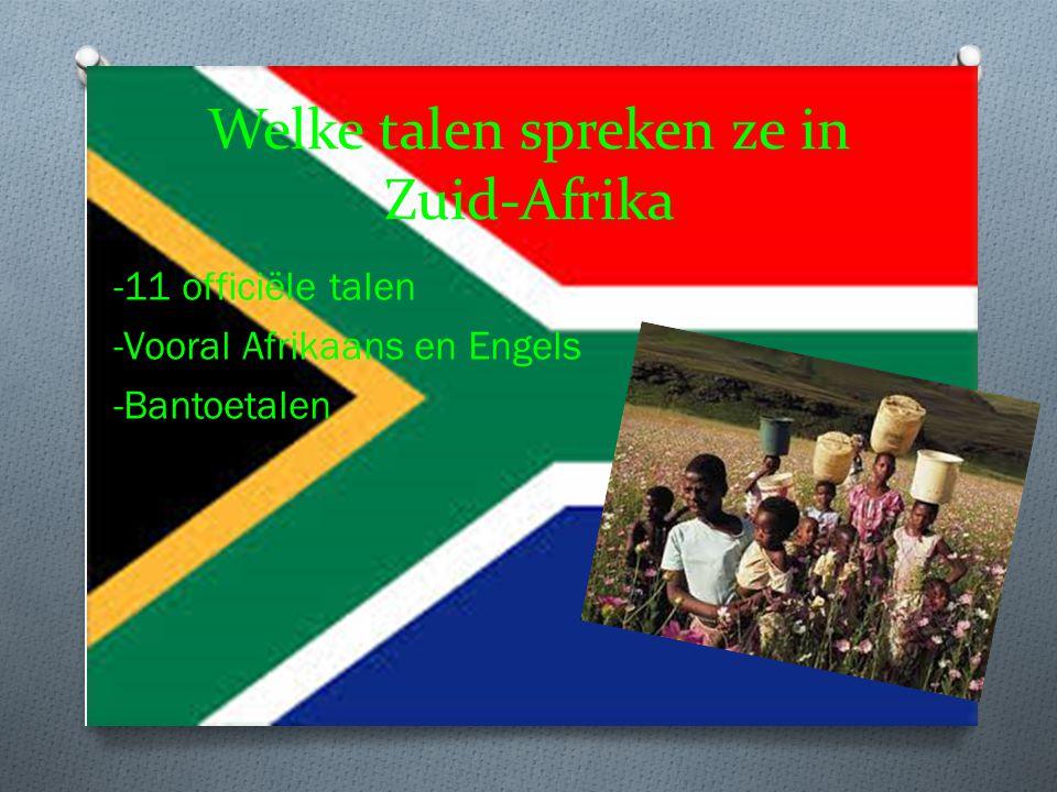 Welke talen spreken ze in Zuid-Afrika