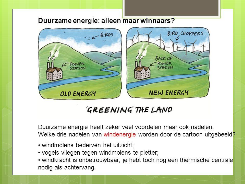 Duurzame energie: alleen maar winnaars