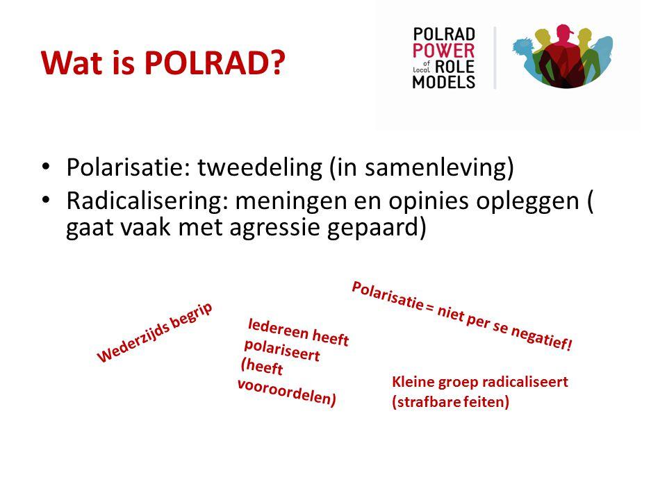 Wat is POLRAD Polarisatie: tweedeling (in samenleving)