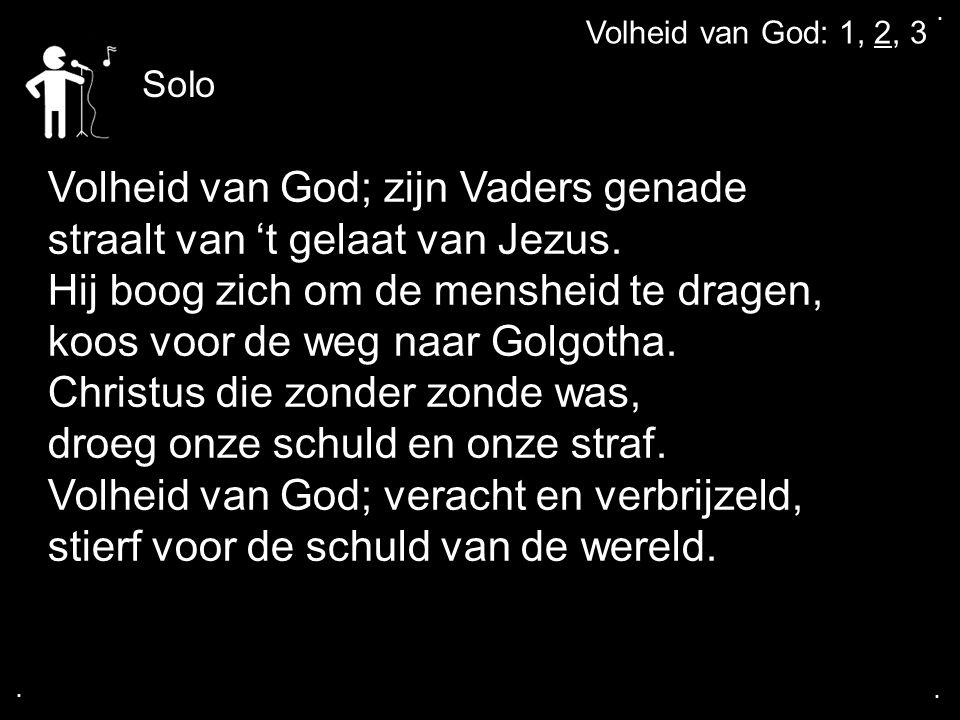 Volheid van God; zijn Vaders genade straalt van 't gelaat van Jezus.