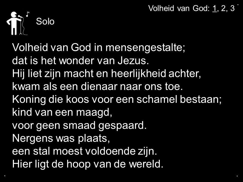 Volheid van God in mensengestalte; dat is het wonder van Jezus.