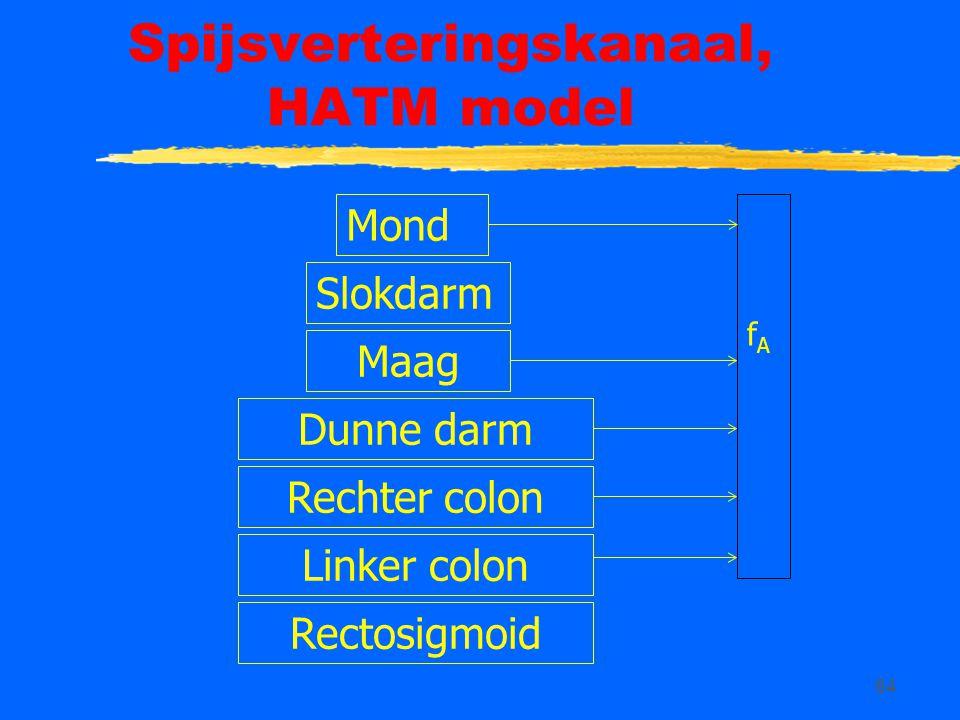Spijsverteringskanaal, HATM model