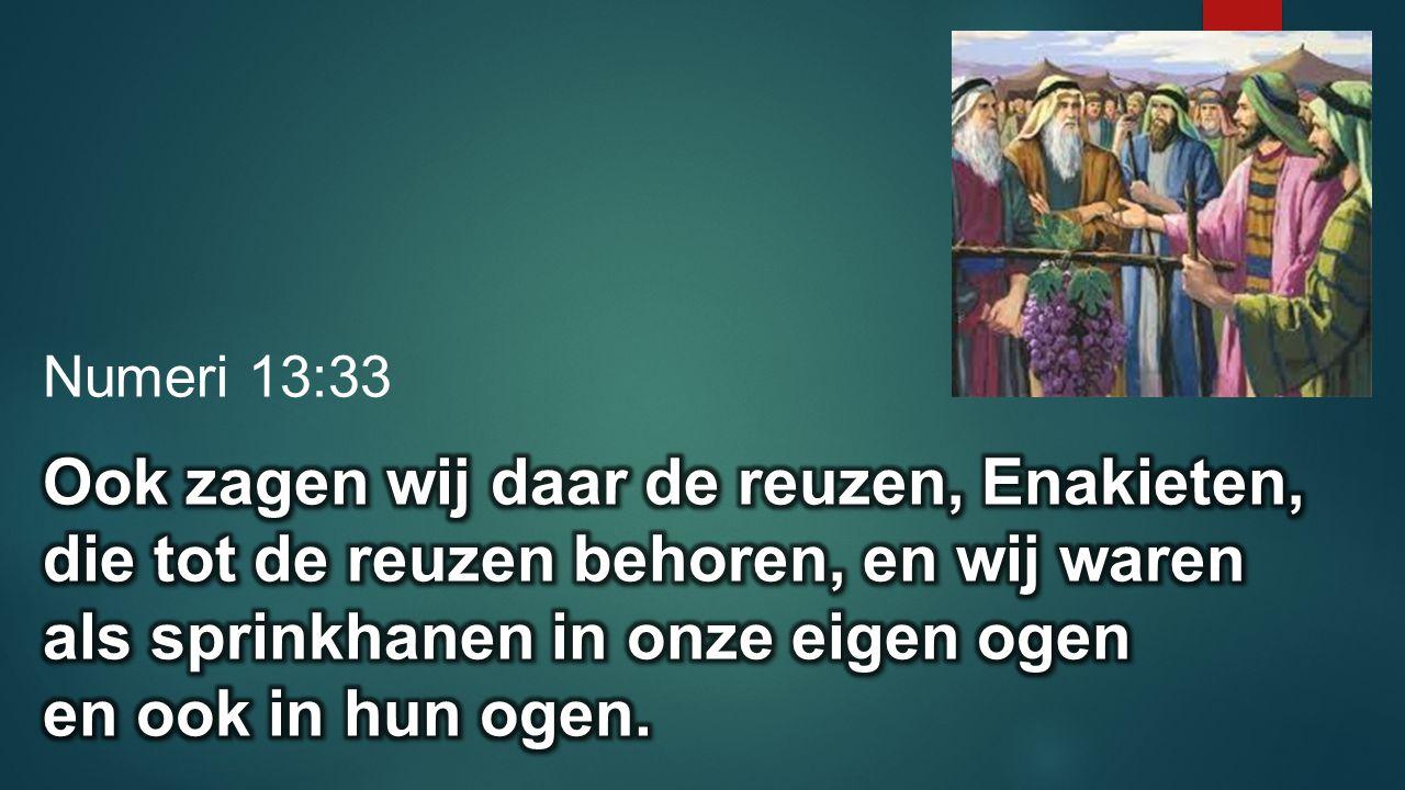 Numeri 13:33 Ook zagen wij daar de reuzen, Enakieten, die tot de reuzen behoren, en wij waren als sprinkhanen in onze eigen ogen.